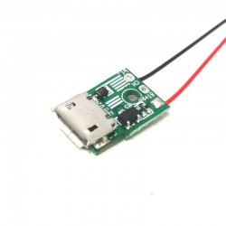 Micro USB 1A Charger